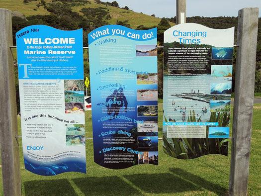 Cape Rodney-Okakari Point Marine Reserve (Goat Island) - New Zealand. Photo: Jennifer Whiting