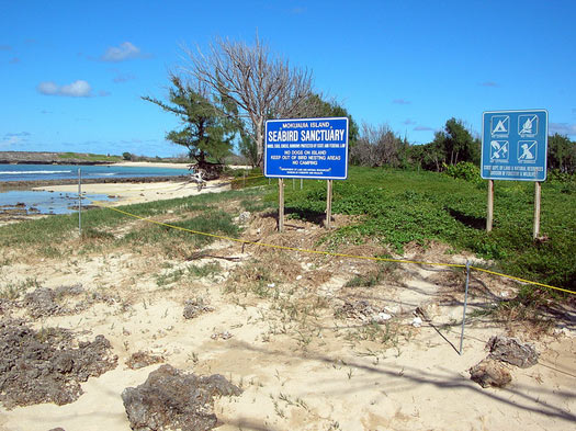 The seabird sanctuary at the centre of Mokuauia, Oahu. Photo: Forest and Kim Starr