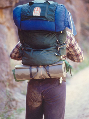 On the road ... top backpacking tips