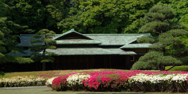 Bright flowers in front of a buildings wrapped in trees in the Imperial Palace's gardens