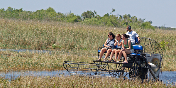 Glide across the 'glades … Everglades by airboat