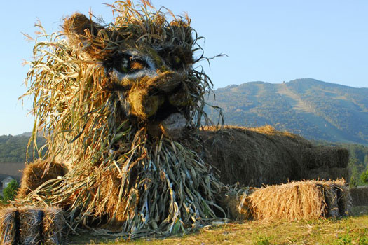 The Killington Lion