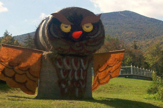 The Killington Owl