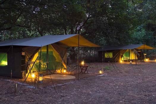 Safari base camp