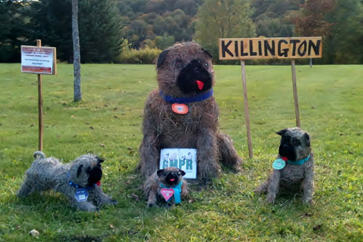 The Killington Pug family.