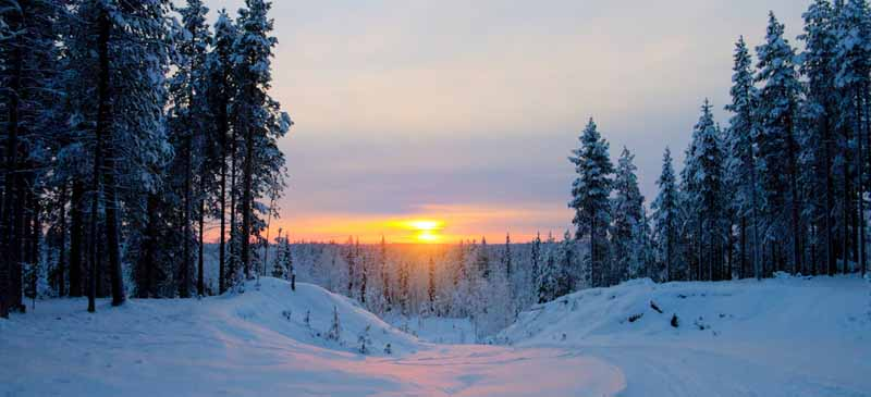 Grab an early booking discount to Lapland