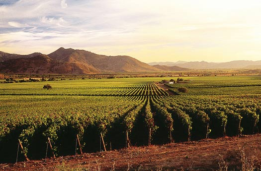 Wine Country, California, United States
