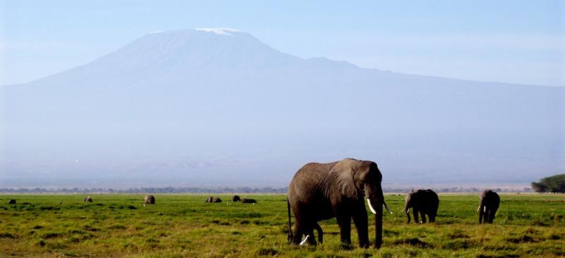 Kilimanjaro - Charity Challenges