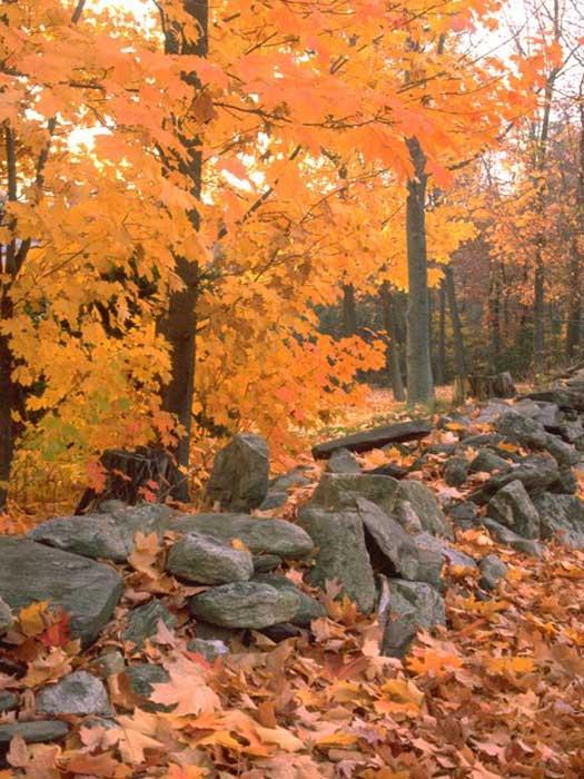 The Mohawk Trail, Massachusetts