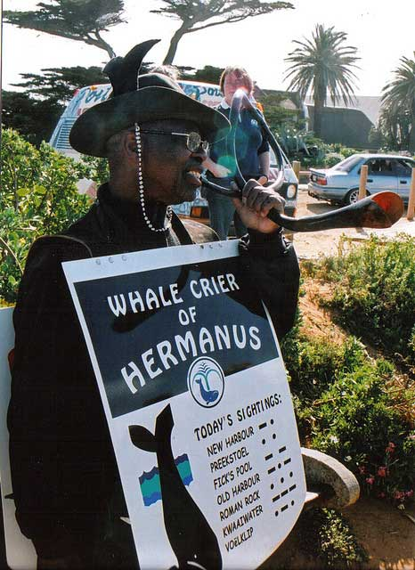 The world's only Whale Crier, Hermanus