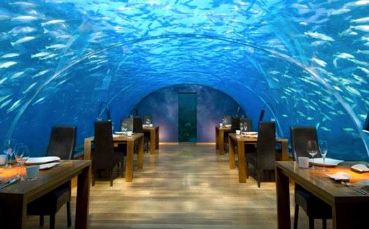 Top 10 Weirdest Restaurants Cheapflights