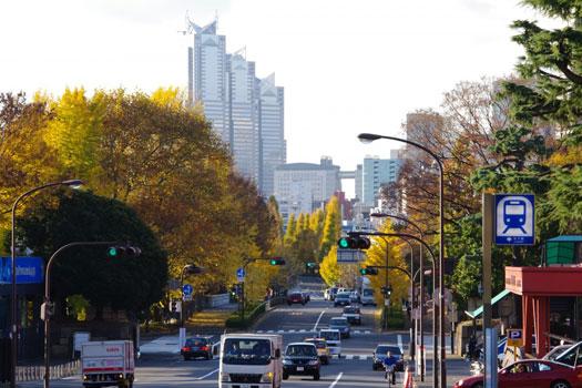 Tokyo in Autumn