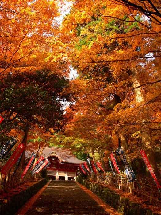 Autumn colours surrounding Gakuenji Temple in Izumo City, Shimane Prefecture