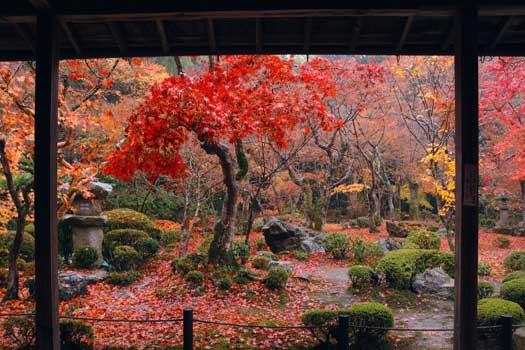 Enkoji temple in Kyoto