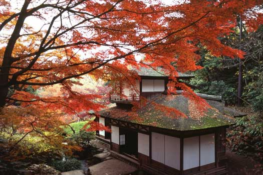 Sankeien Garden in Yokohama City, Kanagawa Prefecture
