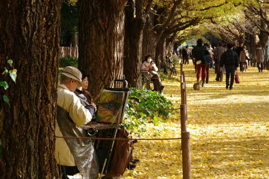 Sitting among the Ginkgo trees in Tokyo