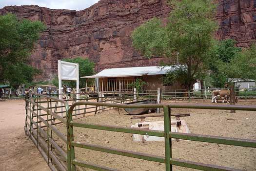 A shop at the edge of Supai Village, Arizona