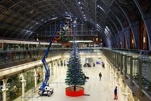 London - Christmas trees with real bling