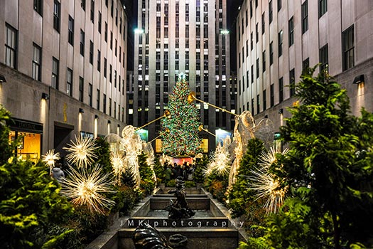 New York - Christmas trees with real bling