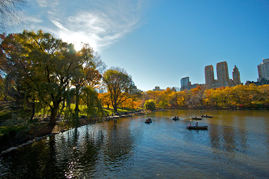 Central Park, New York City - TripAdvisor's most talked about attractions of 2012
