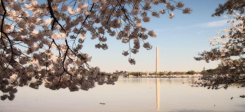 Washington - Top 5 plac