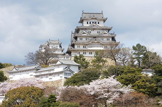 Himeji Castle, Japan - Top 5 places to see cherry blossoms