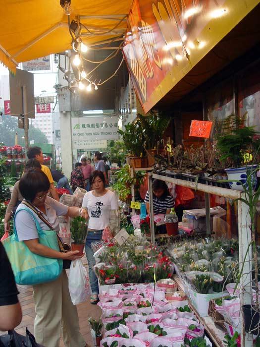 Flower Market Road