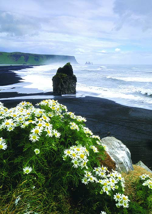 South shore Iceland