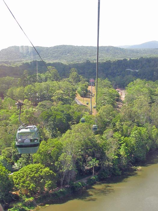 Skyrail Rainforest Cableway, Cairns, Australia. Photo by Sue Waters