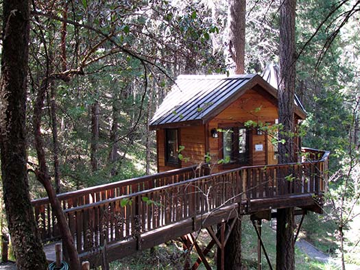 Calypso Treehouse Paradise