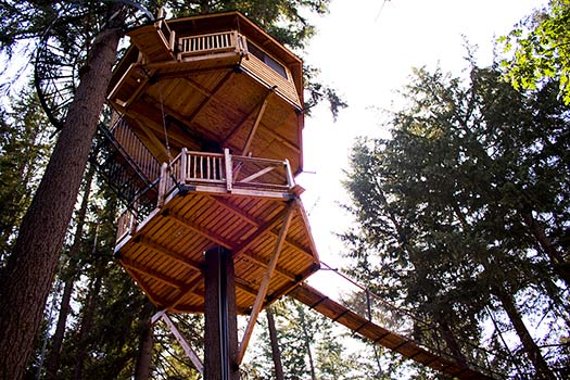 Majestree-Out-n-About-Treesort-2_Top-10-treehouse-stays-in-the-US