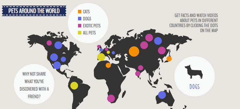Pets around the world infographic