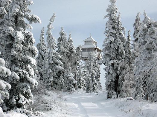 Warner Mountain Lookout
