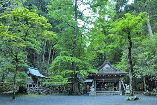 Temple at Mt Kurama. Photo by merec0