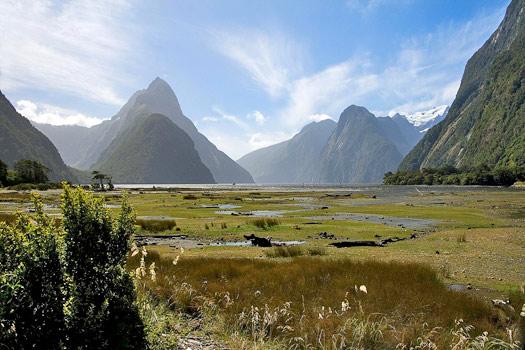 Fiordland, New Zealand. Photo by matthew Hunt