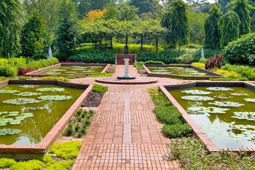 Singapore Botanic Gardens. Photo by Zhao !