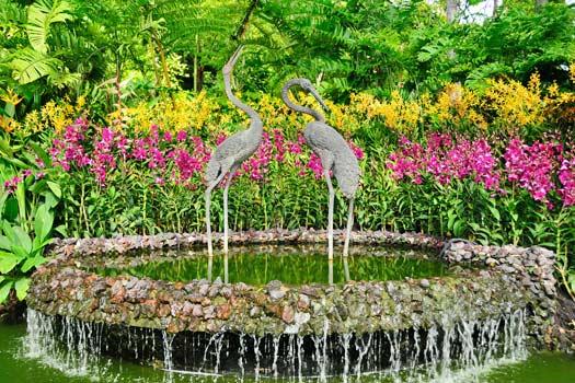 Singapore Botanic Gardens. Photo by Barry Peters`