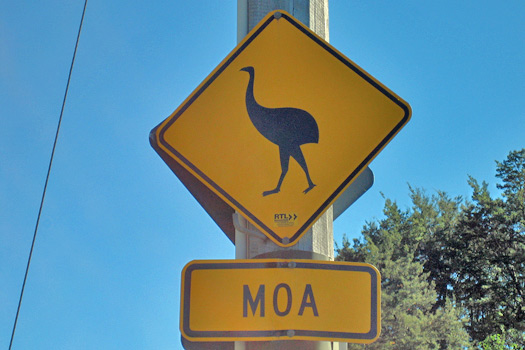 Moa road sign in New Zealand. Photo by Greg Hewgill