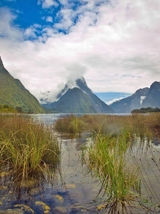 Fiordland, New Zealand. Photo by lifacolor