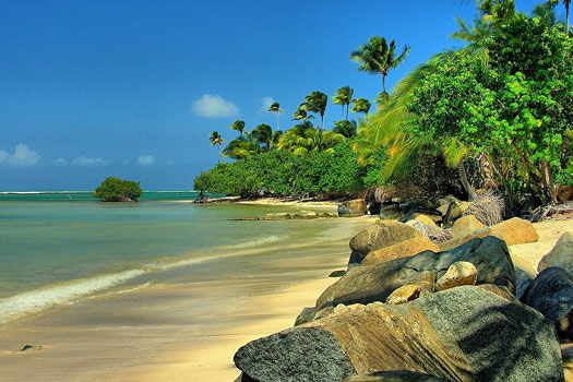 With scenery like this no wonder Chupacabra wants to live in Puerto Rico. Photo by Ron Reiring