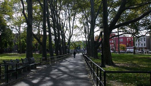 TV_greenpoint-park