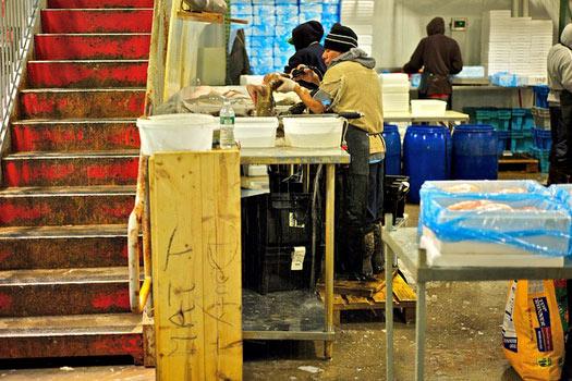 Fulton Fish Market, New York