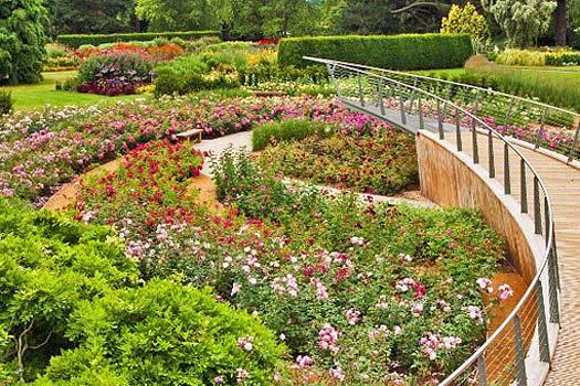 Savill Garden, Windsor. Photo by The Crown Estate