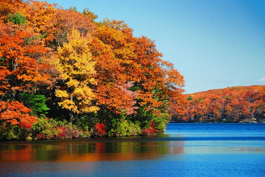 New England Fall scenery