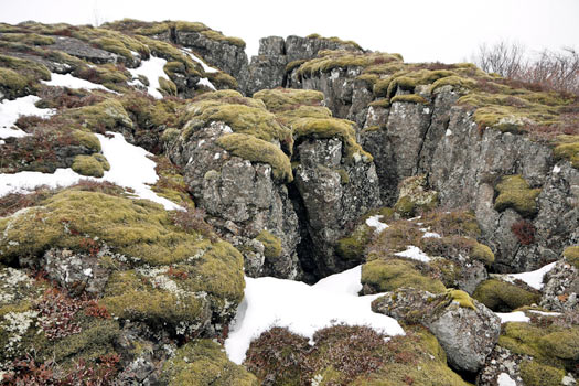 Silfra fissure, Thingvellir National Park, Iceland. Photo by Bernard McManus