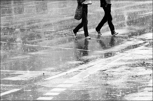 3592047683_c170ea12a8_o-rain-beauty