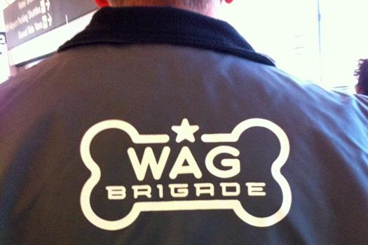 Spot the Wag Brigade at SFO. Photo by flysfo.com
