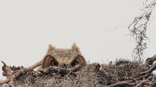 Graham McGeorge / National Geographic Traveler Photo Contest