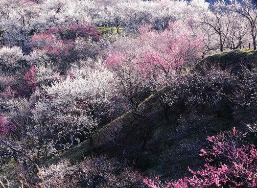 Hideyuki Katagiri / National Geographic Traveler Photo Contest