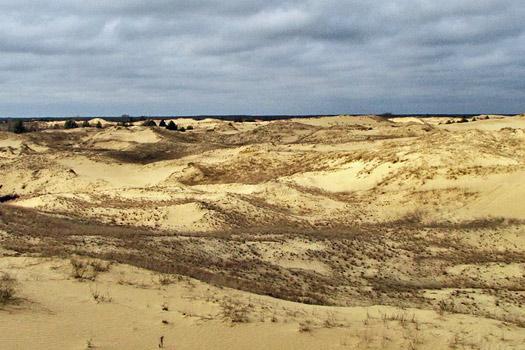 Oleshky Sands, Ukraine. Photo by Arlot